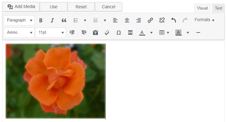 ad inserter visual editor
